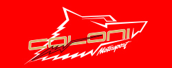 colonimotorsport.com